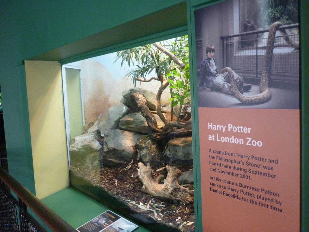 El Reptiliario del Zoo de Londres